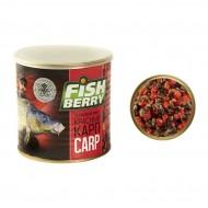 FISHBERRY Карпкрасный - зерновой микс (клубника) - 430 мл
